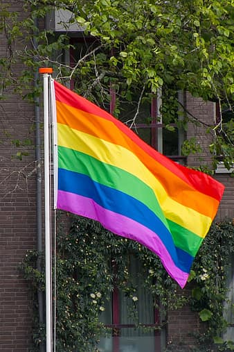 LGBTQ Rights and the Upcoming Election